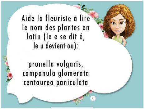 OrthoVillage - Elsa la fleuriste - Fonctions exécutives