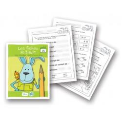Bidule, fiches reproductibles pour livrets niveau B de 1 à 5
