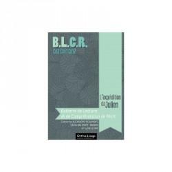BLCR - Batterie de lecture et de compréhension de Récit