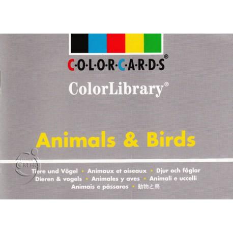 Animaux et oiseaux - 96 cartes