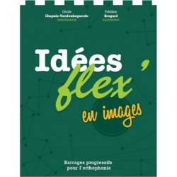 Idées flex en images