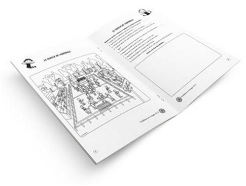 Mon cahier problèmes en images - CE2 (lot de 5)